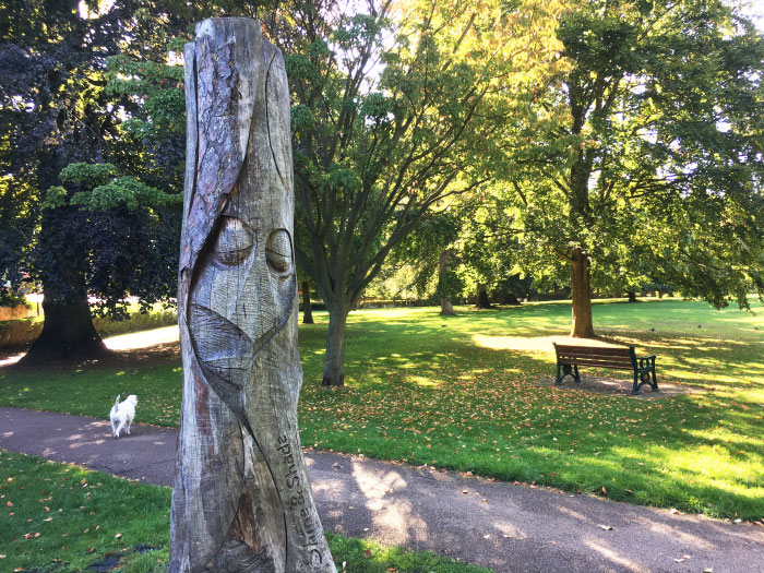 tree carving at people's park