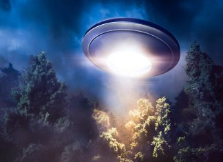 a strange ufo shining light above the tree tops